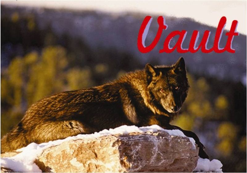 Bear's Wolves Like To Stay HERE (Because Where Else Would They Go?) Vault_11