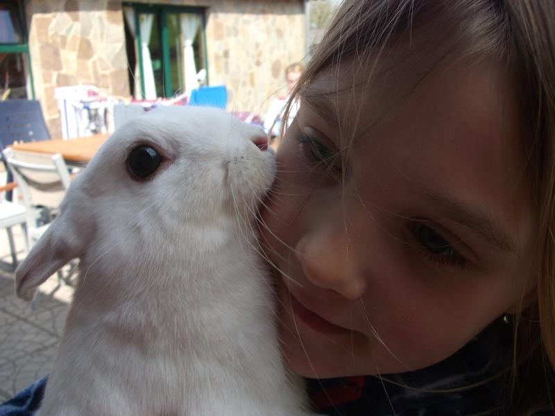 Ma lapine Bisou Photo_13