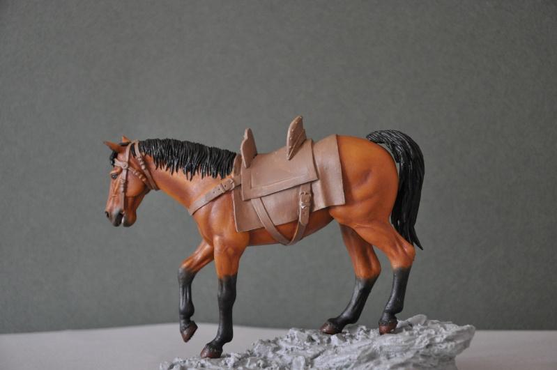 Templier à cheval. Andréa 90 mm Dsc_0033
