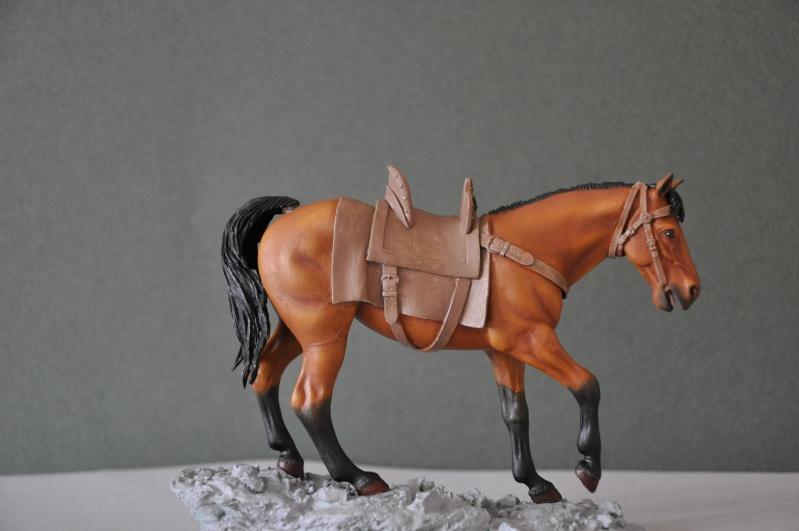 Templier à cheval. Andréa 90 mm Dsc_0034