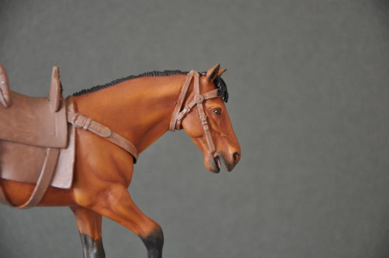 Templier à cheval. Andréa 90 mm Dsc_0035