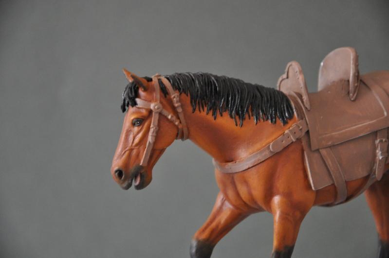 Templier à cheval. Andréa 90 mm Dsc_0036