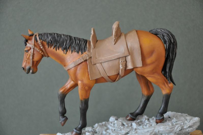 Templier à cheval. Andréa 90 mm Dsc_0040
