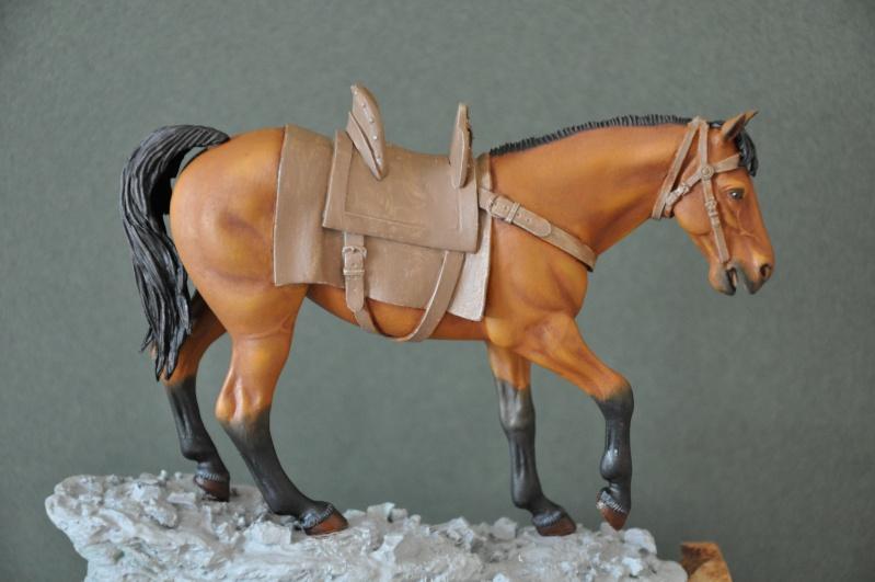 Templier à cheval. Andréa 90 mm Dsc_0041