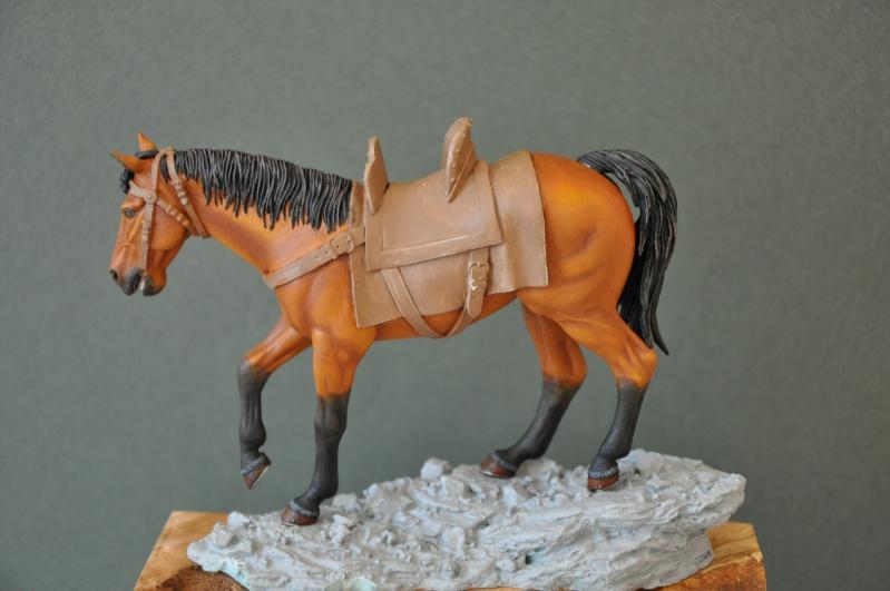 Templier à cheval. Andréa 90 mm Dsc_0044