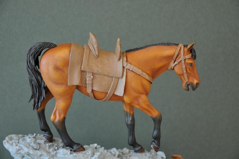 Templier à cheval. Andréa 90 mm Dsc_0045