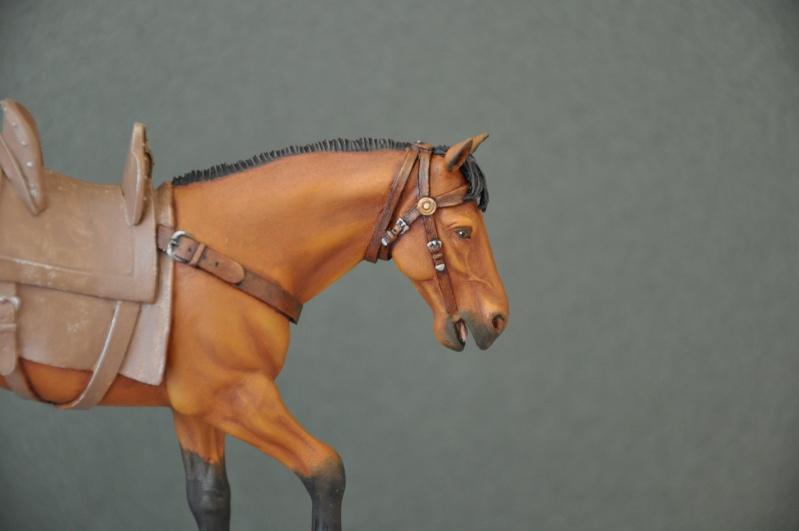Templier à cheval. Andréa 90 mm Dsc_0047