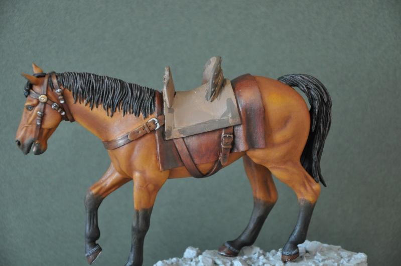 Templier à cheval. Andréa 90 mm Dsc_0048