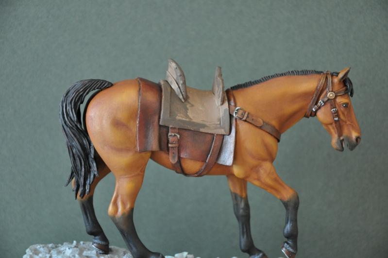Templier à cheval. Andréa 90 mm Dsc_0049