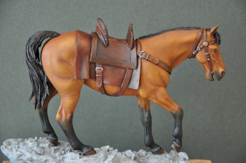 Templier à cheval. Andréa 90 mm - Page 2 Dsc_0052