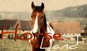 CAMBIANDO? Horse_10