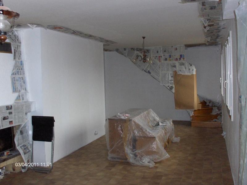 choix des peintures dans mon salon Hpim3212