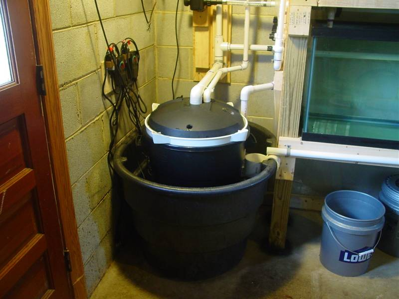 Breeder/ Grow out system  Sys310