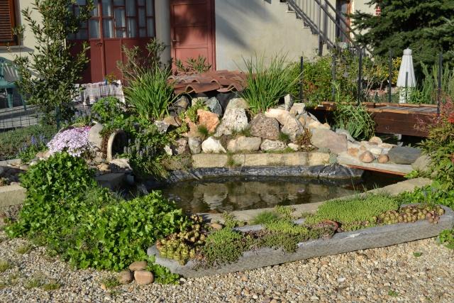 Dove coltiviamo i nostri bonsai - Pagina 3 Dsc_0128