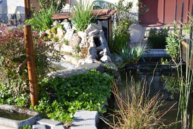 Dove coltiviamo i nostri bonsai - Pagina 3 Dsc_0130