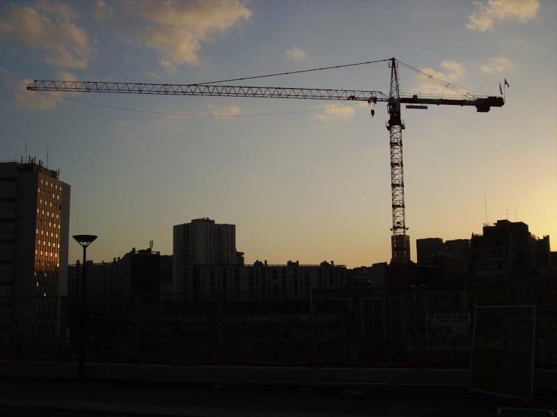 Grues à Paris Rive Gauche Imgp2420