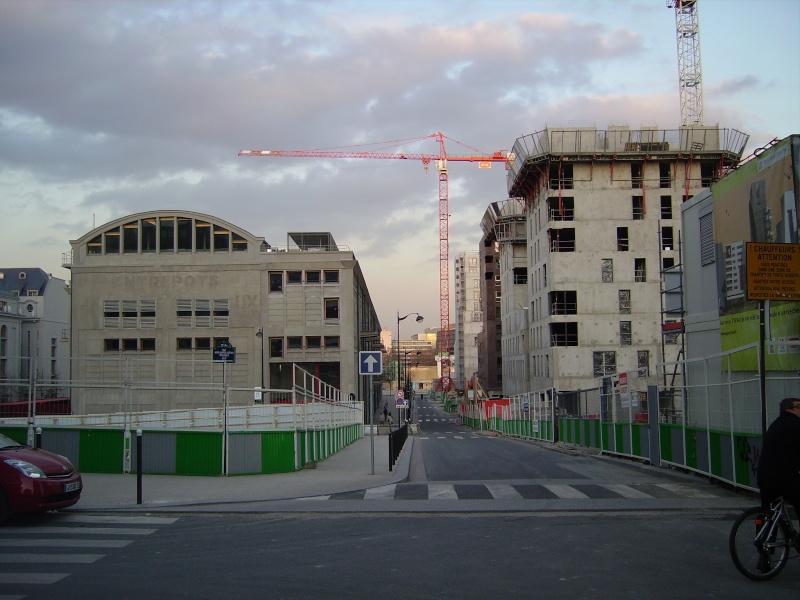 Grues à Paris Rive Gauche Imgp2424