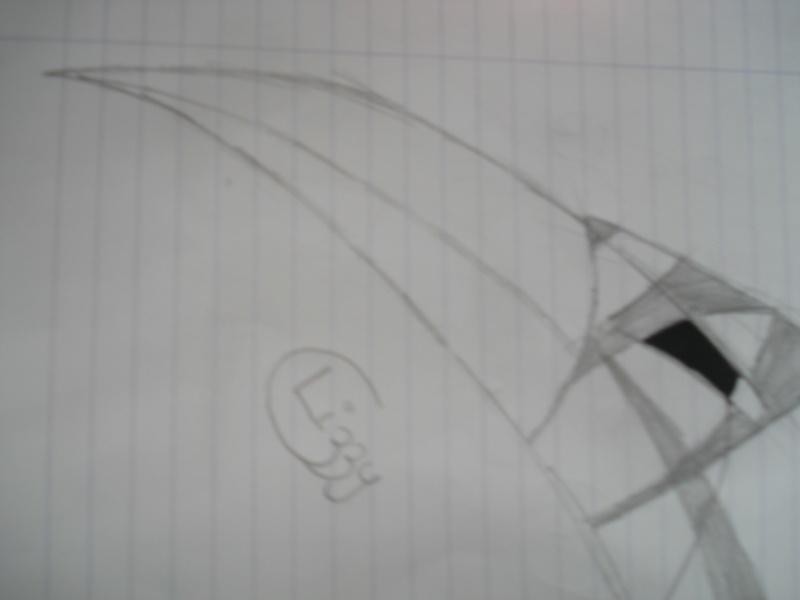 Voili mes dessinous !! - Page 2 Dsc04124