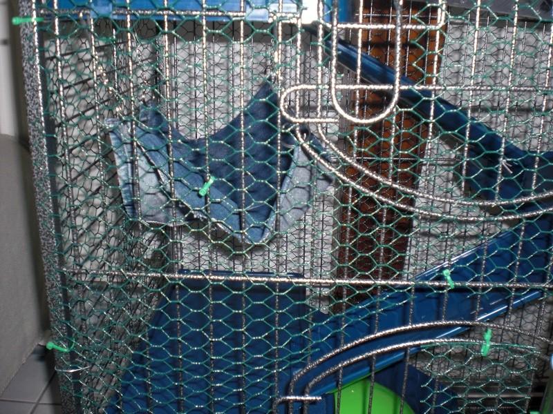 Photos de vos cages - Page 5 Cimg1814