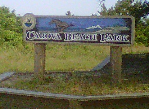 OBX 21-28 (Carova Beach) Carova10
