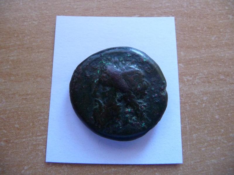 Bronze de Hiéron II de Syracuse P1040311