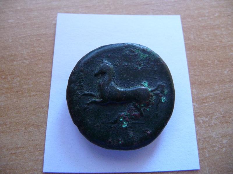 Bronze de Hiéron II de Syracuse P1040312