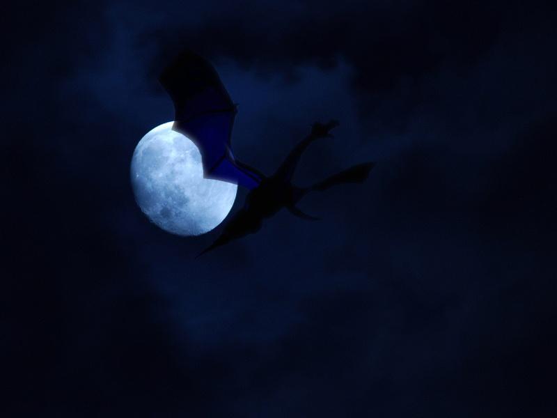 """Avatars """"Sous la Lune"""" 08121110"""
