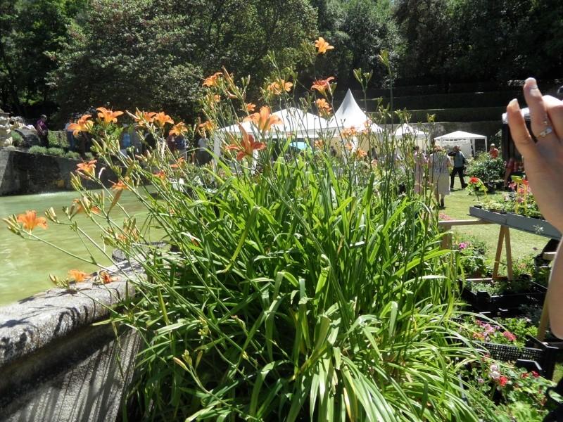 Journées des plantes d'Albertas 05610