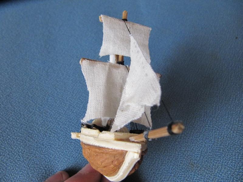 coquisloop pirate Img_6211
