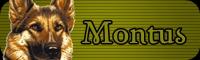 Montus