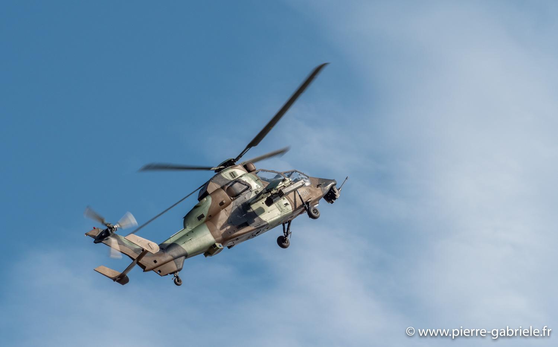 Cervolix, Issoire 21 et 22 septembre... Tigre-10