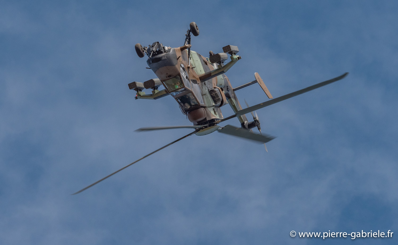 Cervolix, Issoire 21 et 22 septembre... Tigre-11