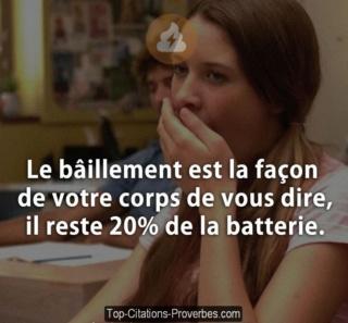 [Résolu] - Chargeur externe ne tient pas la charge Le_bai10