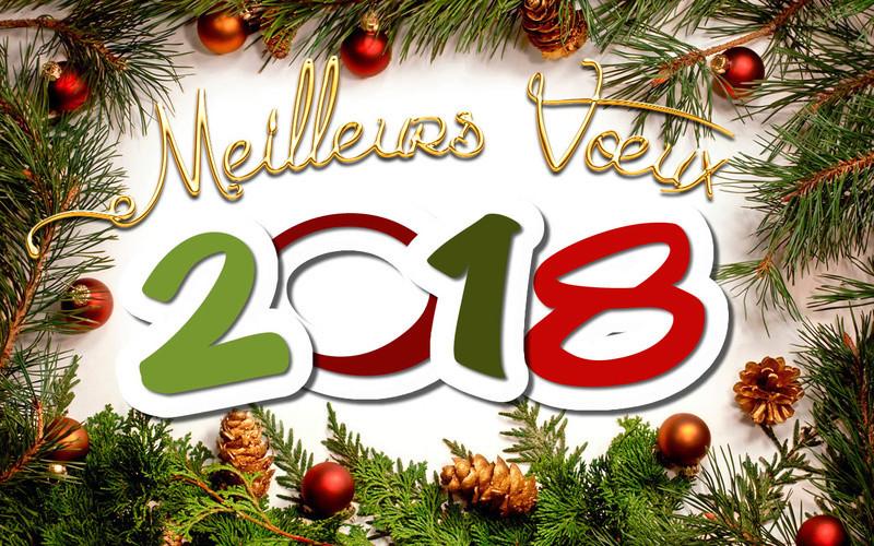 Lundi 31 décembre, dernier jour de l'année 2018 !!! Voeux_10