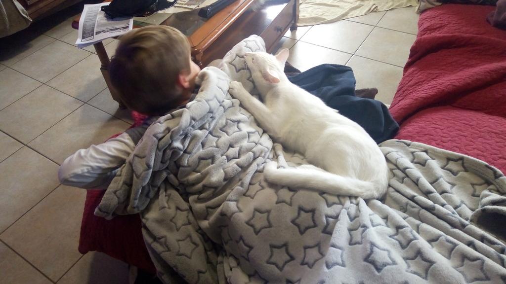 Mitsi, mâle tye européen blanc né le 20 septembre 2017 - Page 3 P_201813