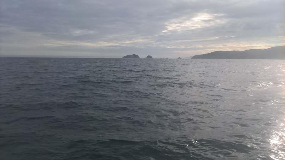 Rando en mer dans le sud de l'Irlande 37703310