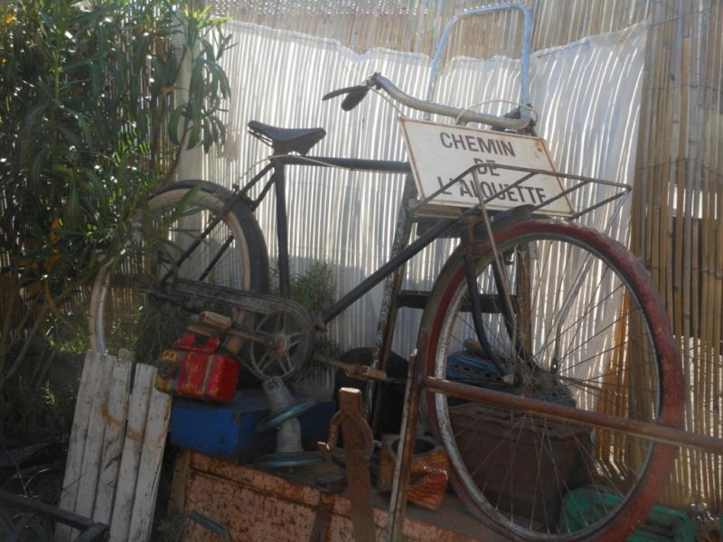tu a quel age le vélo ? Dscn3310
