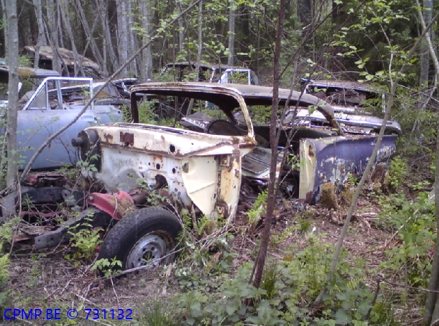 US Car Junkyard, Sweden 15_us10