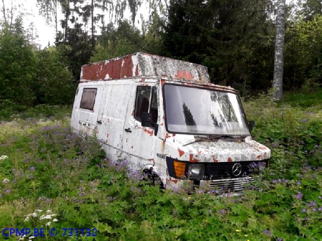 Junk Cars, Sweden 45_jus10