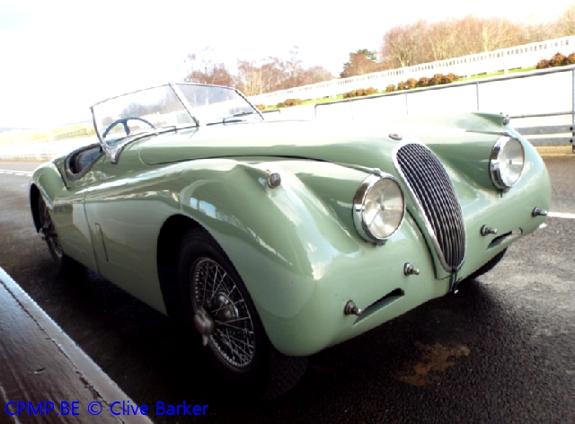 Kay's Alive and Kicking (Jaguar Special) A10310