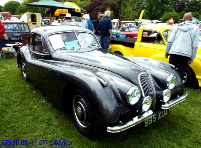 Kay's Alive and Kicking (Jaguar Special) A10410