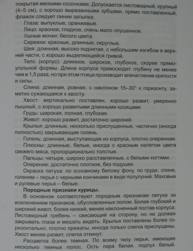 Пушкинская порода - Страница 4 00414