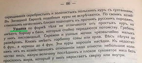 Павловская порода кур - Страница 19 0515