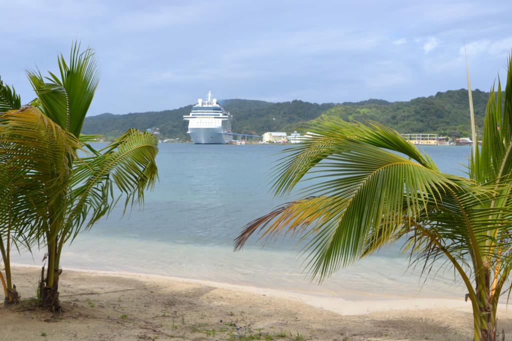 Carnival Glory : croisière dans les Caraïbes - Page 2 Dsc_0317