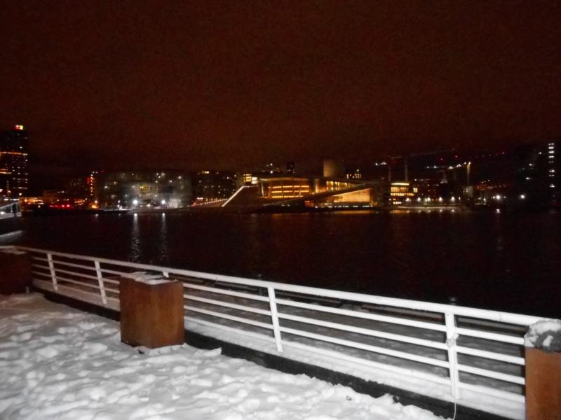 Norvège : Oslo - Page 2 Dscn4236