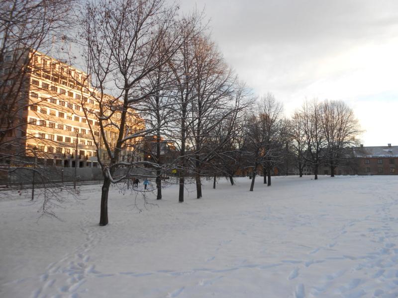 Norvège : Oslo - Page 2 Dscn4326