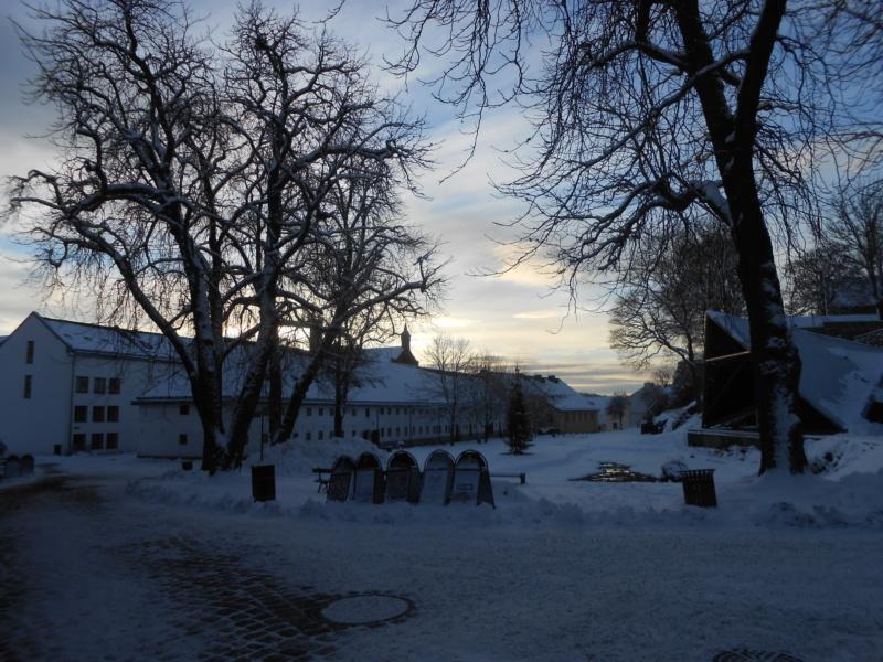 Norvège : Oslo - Page 2 Dscn4330