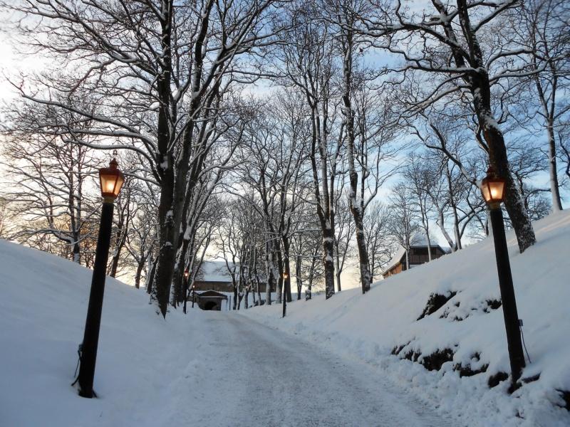 Norvège : Oslo - Page 2 Dscn4331