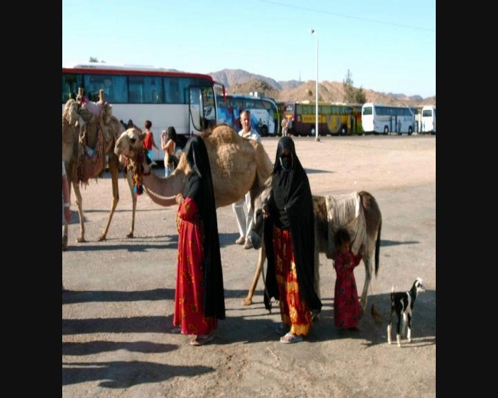 Voyage en Egypte Vts_0112