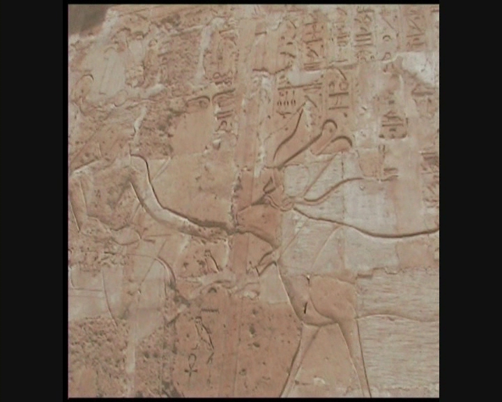 Voyage en Egypte Vts_0133